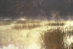 Étang d'automne en brouillard Image stock