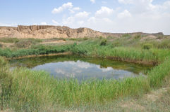 Étang dans le désert Photo stock