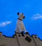 Tang de hond en zijn victrola boven op vroeger RCA die Alb bouwen Royalty-vrije Stock Foto's