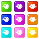 Tang fish, Zebrasoma flavescens icons 9 set Stock Image