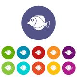 Tang fish, Zebrasoma flavescens set icons Stock Photography