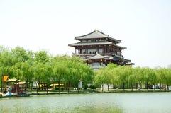 Tang Hibiscus Park Royalty Free Stock Photo