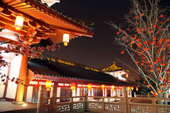 Tang Paradise Royalty Free Stock Image