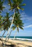 Tangalle海滩在斯里兰卡 免版税库存照片