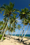 Tangalle beach in Sri Lanka Stock Image