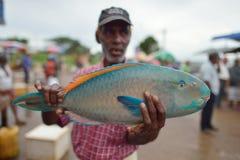 Tangalle, Sri Lanka, el 15 de noviembre de 2015: Venta de un pescado muy colorido en mercado de pescados Imagenes de archivo