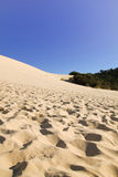 Tangalooma sand hill Royalty Free Stock Image