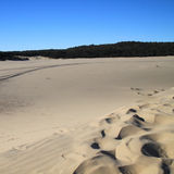 Tangalooma sand hill Royalty Free Stock Images