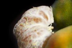Tangarine Стоковые Фотографии RF