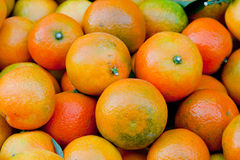 Tangerin background citrus Stock Photo