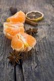 Tangerin och kryddor Arkivbilder