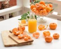 Tangerin och ny fruktsaft Royaltyfri Bild