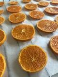 Tangerin som klipps in i skivor lagt ut p? matpapper F?r att torka och att dekorera efterr?tter arkivbild