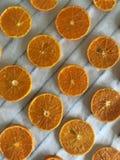 Tangerin som klipps in i skivor lagt ut p? matpapper F?r att torka och att dekorera efterr?tter fotografering för bildbyråer