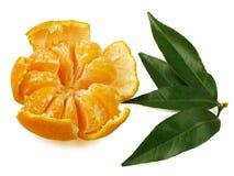 Tangerina, folhas descascadas do verde do mandarino, isoladas no fundo branco Fotografia de Stock Royalty Free