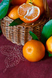 Tangerinas. Foto de Stock Royalty Free