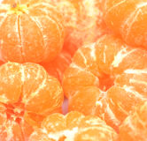 Tangerinas foto de stock royalty free