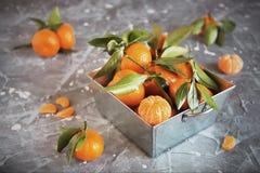 Tangerinas frescas com as folhas na cesta de aço na pedra cinzenta Fotografia de Stock