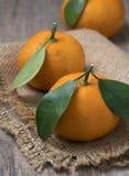 Tangerinas maduras frescas com as folhas na bacia em um fundo de madeira fotos de stock