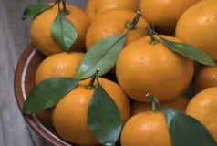 Tangerinas maduras frescas com as folhas na bacia em um fundo de madeira fotos de stock royalty free