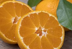 Tangerinas maduras frescas com folhas em um fundo de madeira fotos de stock royalty free
