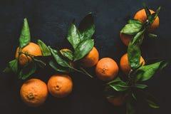 Tangerinas ou clementina com folha verde Ainda vida no fundo escuro Fotos de Stock Royalty Free