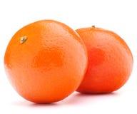 Tangerine ή μανταρινιών φρούτα στοκ φωτογραφία