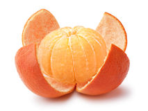 Tangerine, μανταρίνι, κλημεντίνη στοκ εικόνα με δικαίωμα ελεύθερης χρήσης