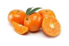 Tangerine ομάδα στοκ φωτογραφία με δικαίωμα ελεύθερης χρήσης