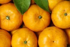 tangerine της Κίνας καραμελών Στοκ Εικόνες