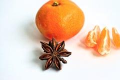 Tangerine и анисовка Стоковые Изображения