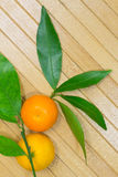 2 tangerine и листья на светлой предпосылке Стоковая Фотография