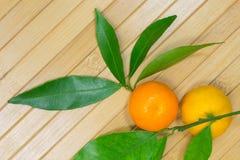 2 tangerine и листья на светлой предпосылке Стоковое Фото