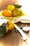Tangerine и объекты Стоковое Изображение