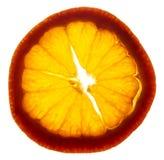 tangerine ломтика Стоковая Фотография RF