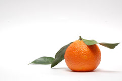 The Tangerine. Stock Images