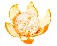 Tangerine. Isolated on white background Stock Photography
