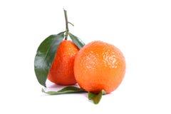 Tangerine Стоковое Изображение RF