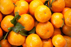 Tangerine. A kind of orange from china Stock Images