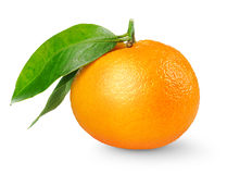 Tangerine. One tangerine fruit with stem and leaves isolated on white background royalty free stock photography