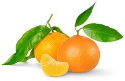 Tangerine Royalty Free Stock Photos