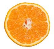 tangerine стоковые фотографии rf