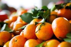 Tangerine Imagem de Stock