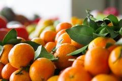 Tangerine Stock Images
