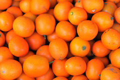 Tangerine. Small sweet ripe tangerine fruits Stock Image