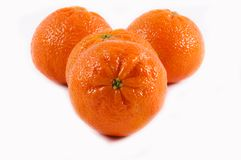 Tangerine Stock Photography
