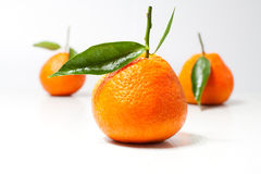 Tangerine. Fresh tangerine fruits with green leaves isolated Royalty Free Stock Image