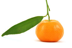 Tangerine. Isolated on pure white background stock photos