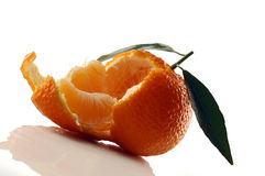 Tangerine. Fresh tangerine stock photography