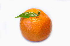 Tangerine Fotografia de Stock